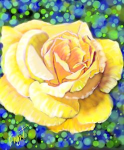 Yellow Rose 101