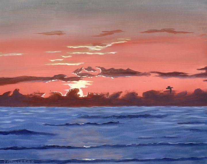 Texas Gulf Morning - John W Fuller