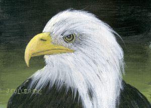 Eagle One