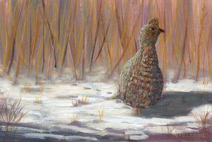 Winter Grouse