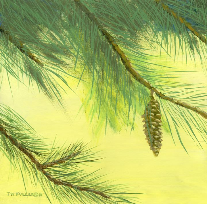 Pine - John W Fuller