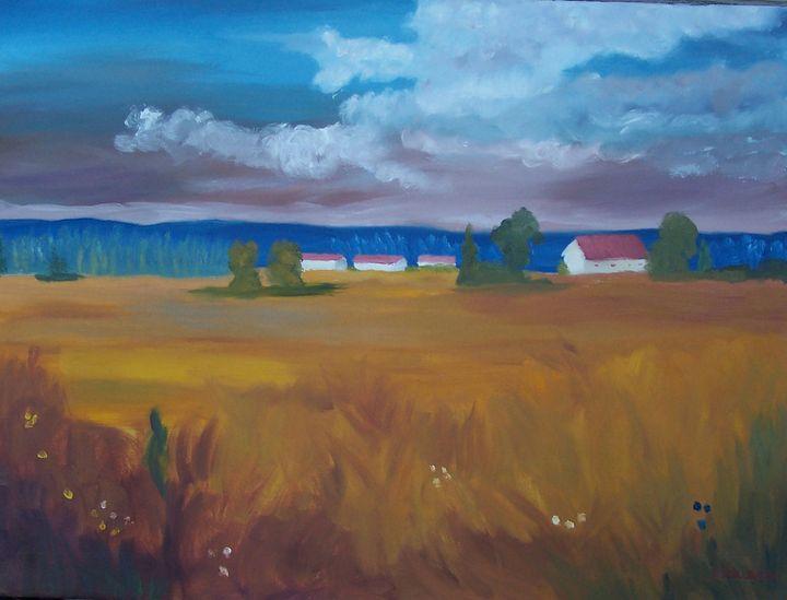 Impressions of a field - John W Fuller