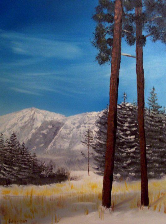 Mountain Pines - John W Fuller