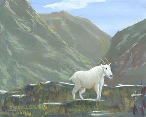 Mountain Pasture