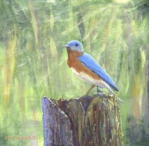 #150 Bluebird