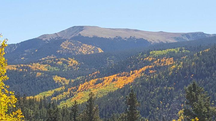 Fall colors - C.E-GODWIN