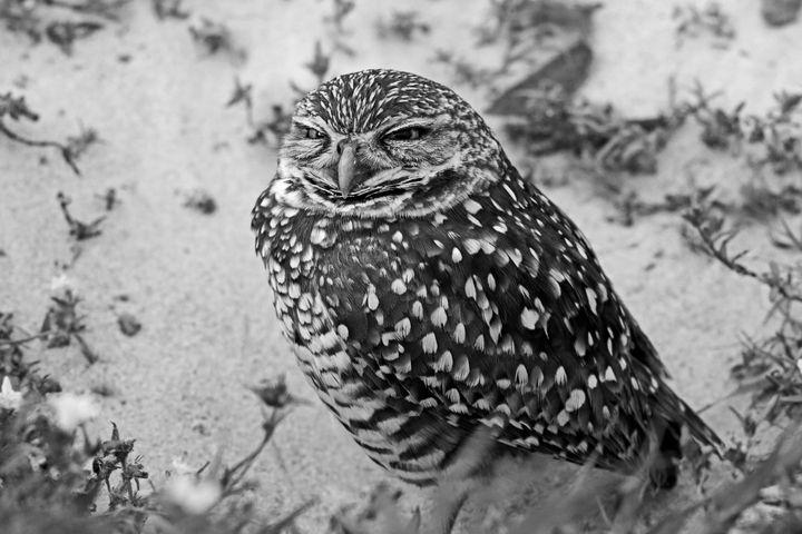 Empty Feelings - Photography by Michiale