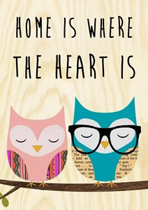 Home is where the heart is owls