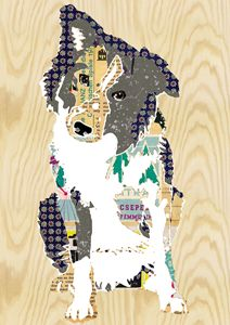 Border Collie Collage