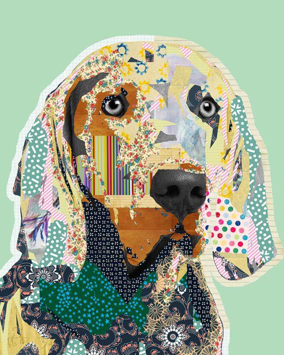 Weimaraner Dog Collage - GreenNest
