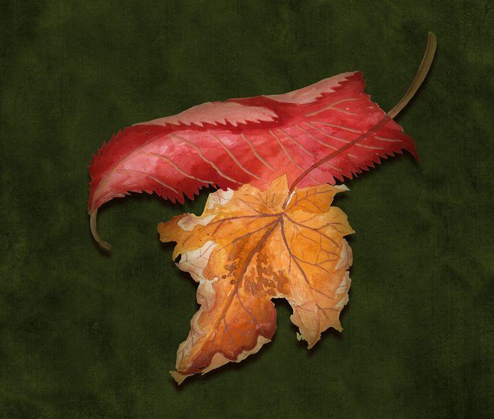 Leaf - Melvyn Hardman