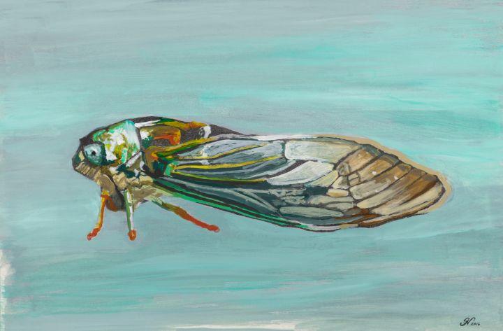 Cicada - SNart