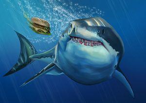 Greedy Shark