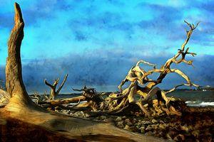Jekyll Island Stories at Driftwood