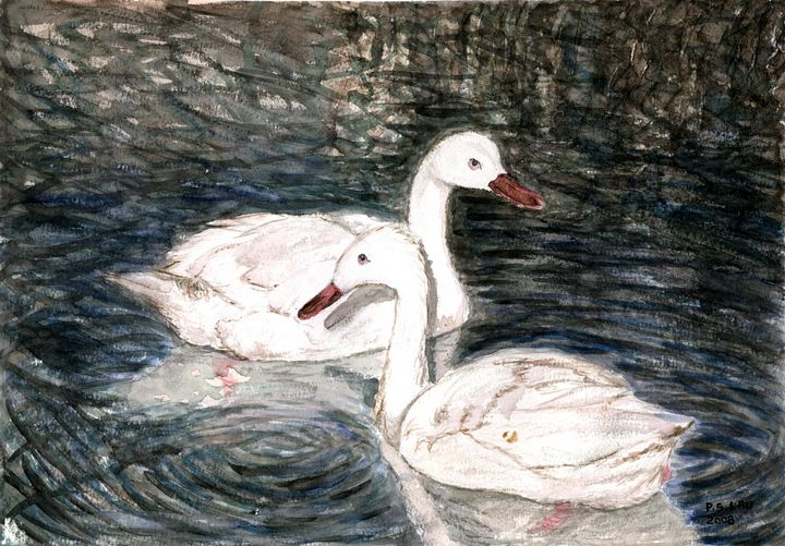 Two young swans - Art and Architecture