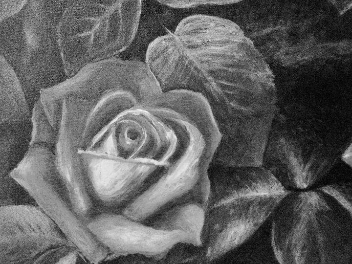 Gray Rose 2 DIGITAL - annabrazao