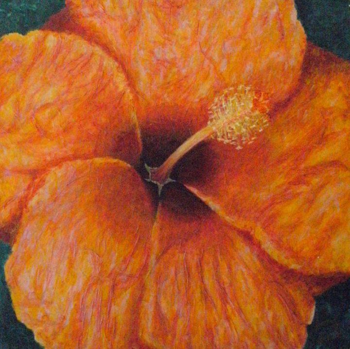 Hibiscus ORIGINAL - annabrazao