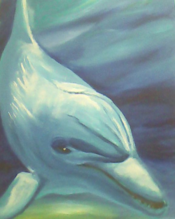 Dolphin swim - Aislinn