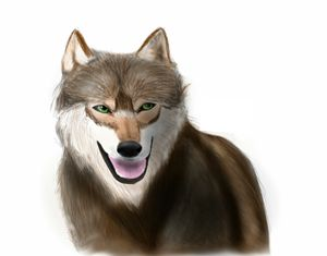 Realistic Wolf Piece