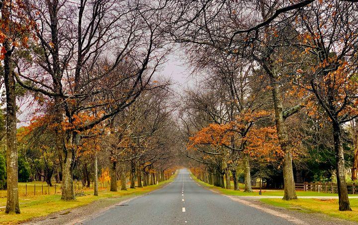 Honor Avenue , Macedon VIC - Stephen Seago