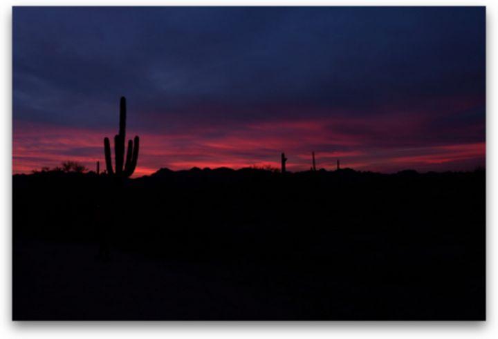 Desert Sunset - The Snap Gallery 📸📸📸