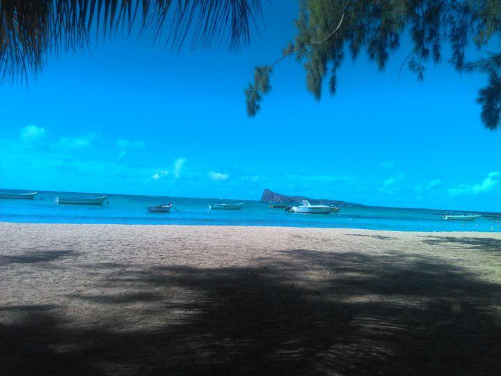 Island Vieuw - Road Trip