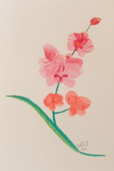 Orchid - Dave's Art