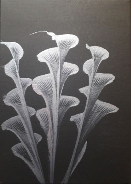 Abstract Lilies - Dave's Art