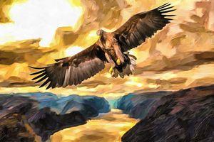 Golden Eagle Over Canyon