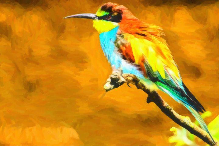 European bee-eater - Joseph Wall Art