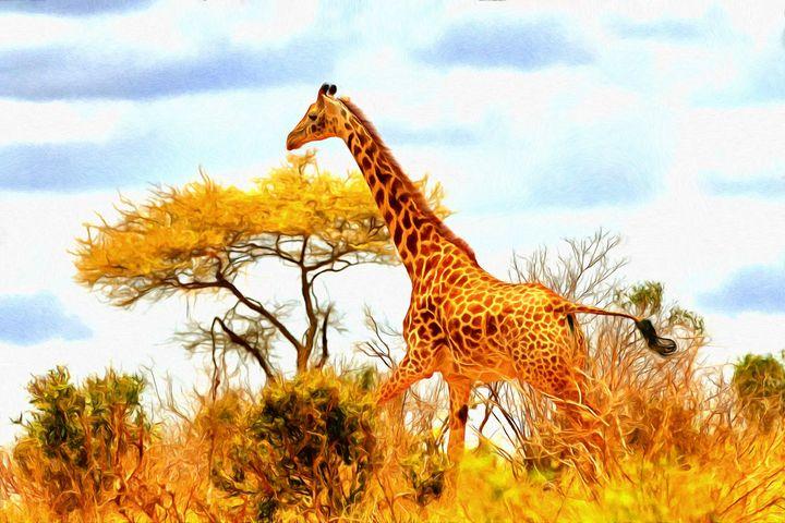 Giraffe by W Joseph - Joseph Wall Art