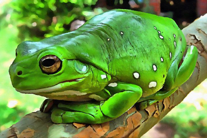 Frog Bristle Brush by W Joseph - Joseph Wall Art