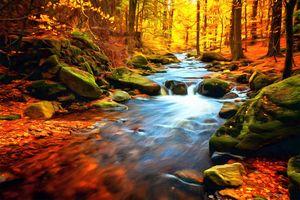 Stone n Creek by W Joseph