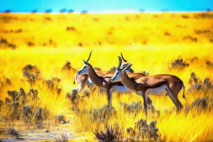 Springbok By W Joseph - Joseph Wall Art