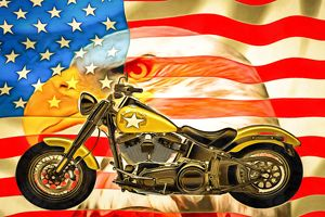 USA Flag Eagle Harley