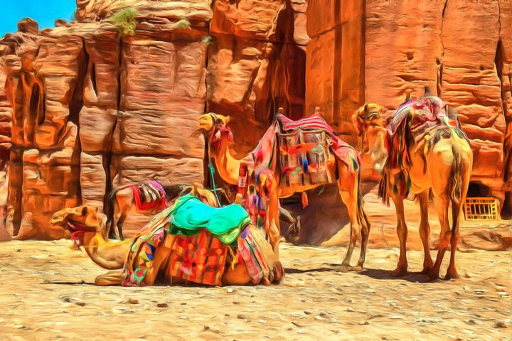3 Camels & Horse by W Joseph - Joseph Wall Art