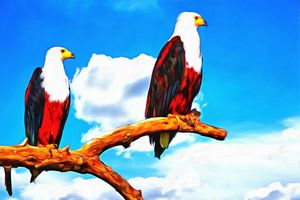 Two African Fish Eagles Perched