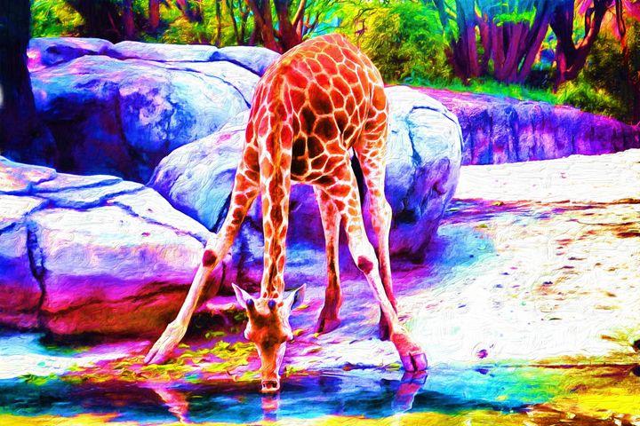 Giraffe Drinking at River - Joseph Wall Art