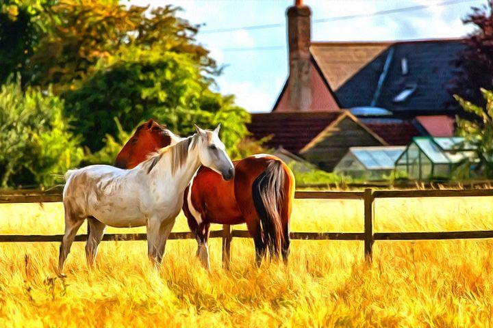 2 Horses By W Joseph - Joseph Wall Art