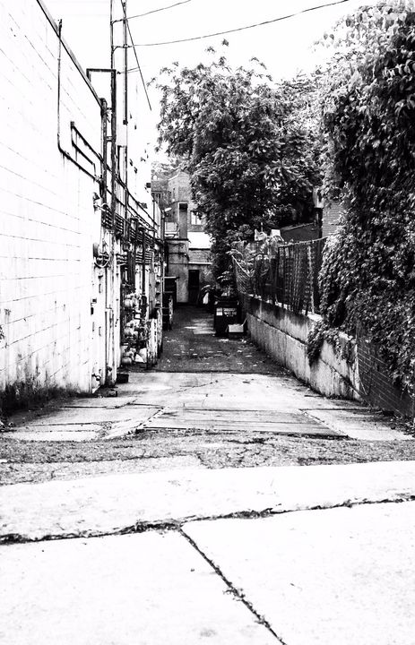 Back Alley - Allen Williams