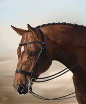Turquoise Equestrian Art
