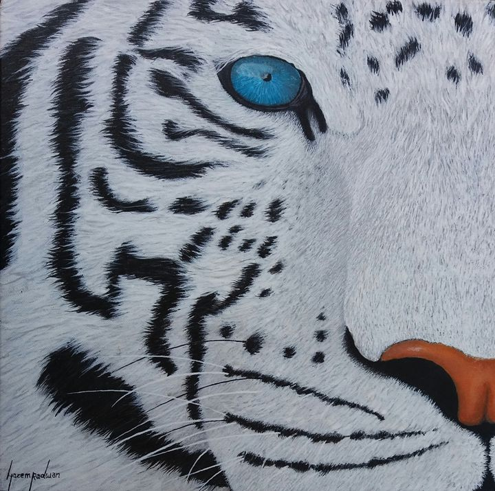 Tiger - hazem radwan