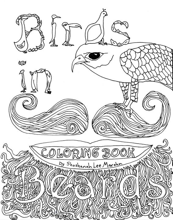 Collector Cover to Birds in Beards - Shoshanah's Art