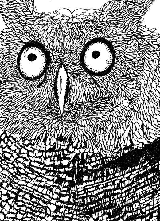 Owl - Shoshanah's Art