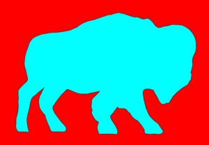 Red and Blue Buffalo