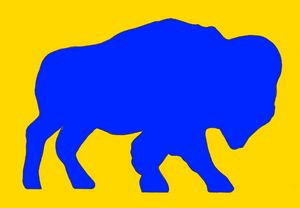 Buffalo in Yellow and Blue