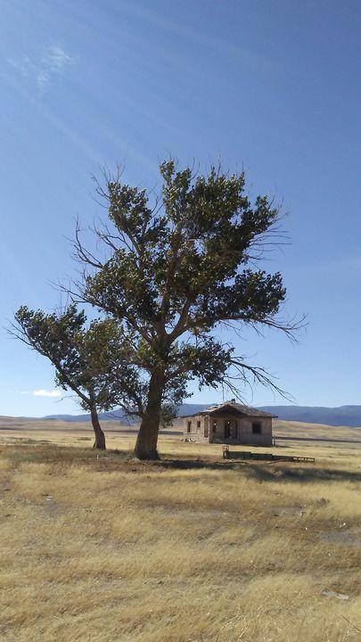 Abandoned House - Catherine