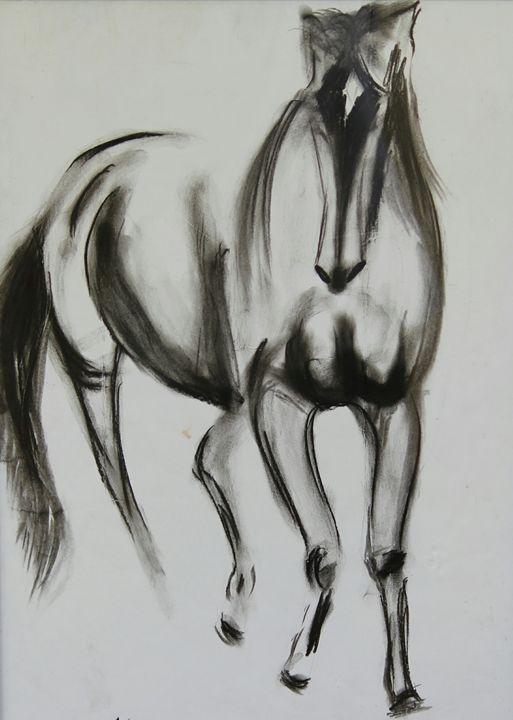 The beautiful horse - Prashant Sharma