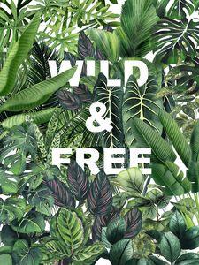 Wild Ans Free