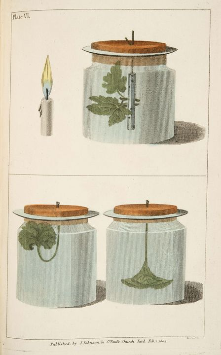 Benjamin Barton Smith~Elements of Bo - Old master image